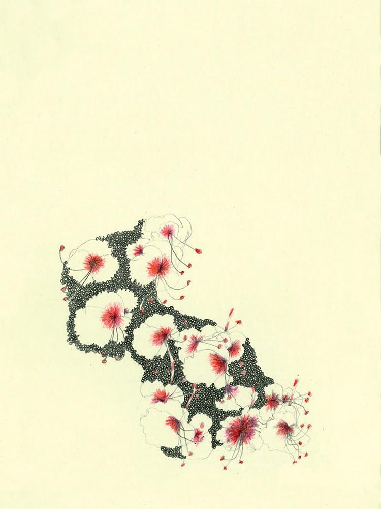 Des motifs ou presque | Isabelle Chatellard